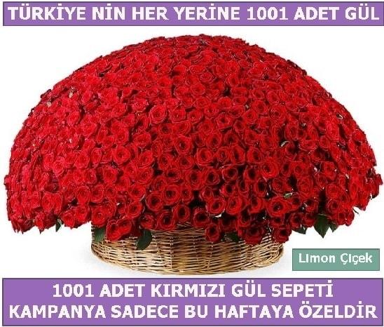 1001 Adet kırmızı gül Bu haftaya özel  Şırnak çiçek gönderme