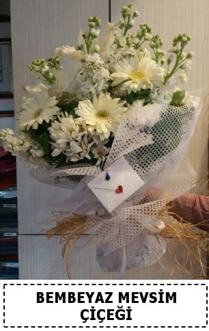 Bembeyaz görsel mevsim çiçek buketi  Şırnak çiçek satışı