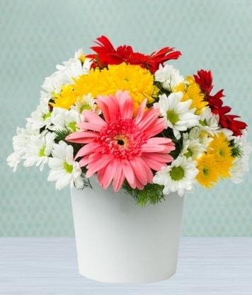 Seramik Vazoda Gelbera ve Papatya  Şırnak çiçek , çiçekçi , çiçekçilik