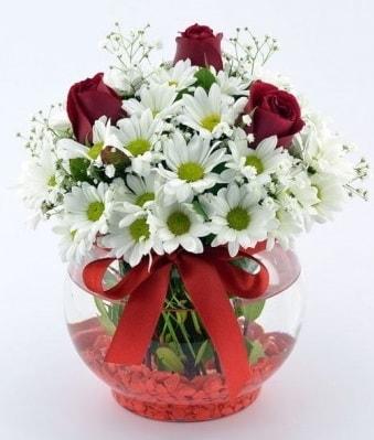 Fanusta 3 Gül ve Papatya  Şırnak çiçek siparişi vermek