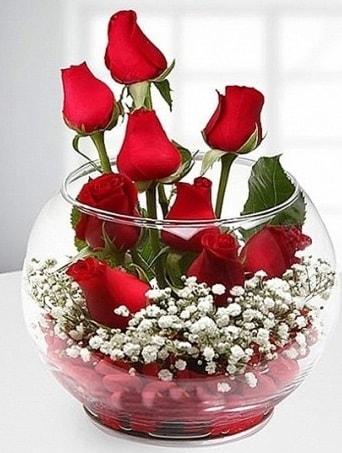 Kırmızı Mutluluk fanusta 9 kırmızı gül  Şırnak internetten çiçek siparişi