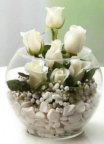 Beyaz Mutluluk 9 beyaz gül fanusta  Şırnak internetten çiçek siparişi