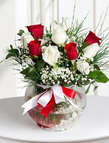 Aşk Küresi  5 beyaz 5 kırmızı gül fanusta  Şırnak çiçek siparişi vermek