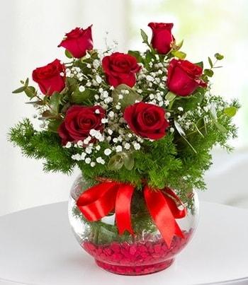 fanus Vazoda 7 Gül  Şırnak çiçekçi mağazası