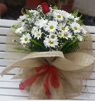 Papatya 1 adet kırmızı gül buketi  Şırnak online çiçek gönderme sipariş