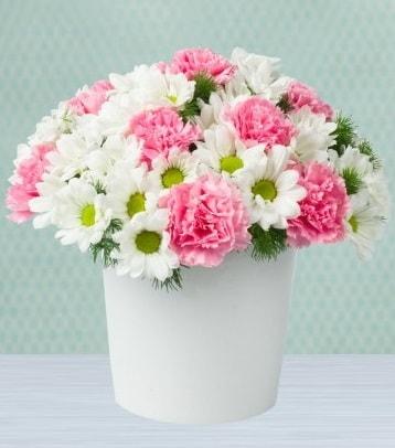 Seramik vazoda papatya ve kır çiçekleri  Şırnak internetten çiçek siparişi