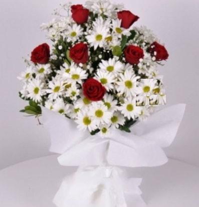 7 adet kırmızı gül ve papatyalar krizantem  Şırnak çiçek siparişi vermek