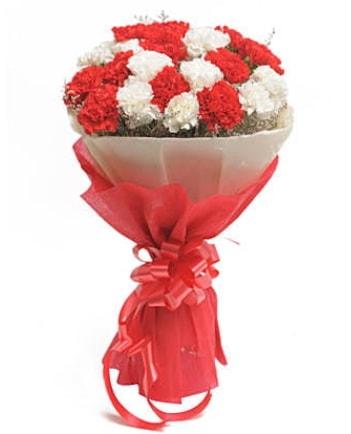 21 adet kırmızı beyaz karanfil buketi  Şırnak hediye çiçek yolla