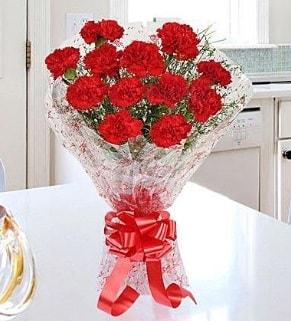 12 adet kırmızı karanfil buketi  Şırnak çiçek gönderme