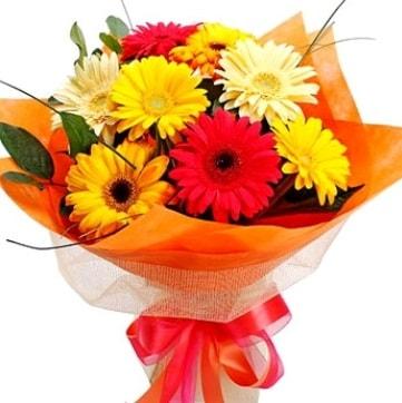 9 adet karışık gerbera buketi  Şırnak çiçekçi mağazası