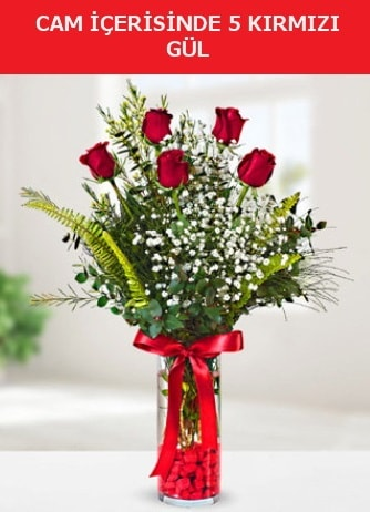 Cam içerisinde 5 adet kırmızı gül  Şırnak internetten çiçek siparişi