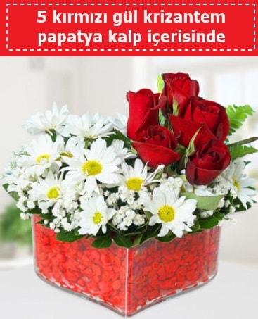 mika kalp içerisinde 5 kırmızı gül papatya  Şırnak çiçek , çiçekçi , çiçekçilik