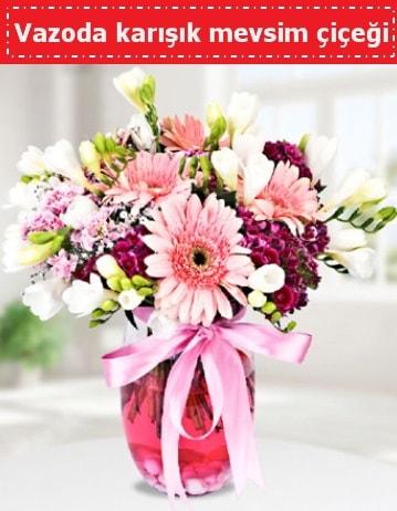 Vazoda karışık mevsim çiçeği  Şırnak çiçekçi mağazası