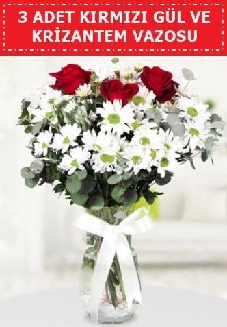3 kırmızı gül ve camda krizantem çiçekleri  Şırnak çiçek , çiçekçi , çiçekçilik