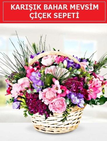 Karışık mevsim bahar çiçekleri  Şırnak çiçek siparişi sitesi
