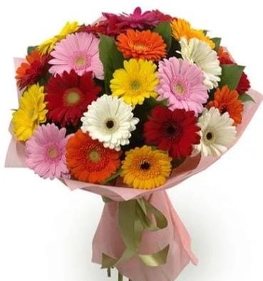 Karışık büyük boy gerbera çiçek buketi  Şırnak hediye çiçek yolla