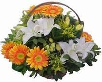Şırnak çiçek gönderme sitemiz güvenlidir  sepet modeli Gerbera kazablanka sepet