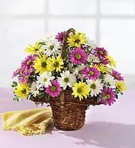 Şırnak online çiçek gönderme sipariş  Mevsim çiçekleri sepeti